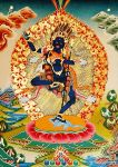 Bhagavani [Krodha Kali] with a great radiance at the time of darkness, fierce and raging.